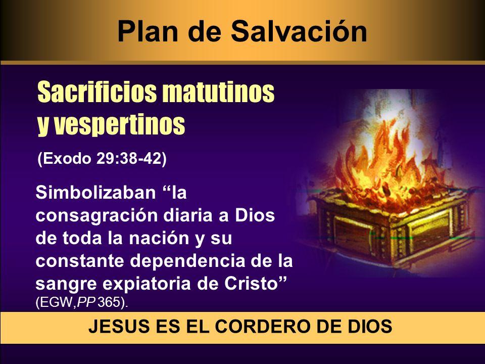 Simbolizaban la consagración diaria a Dios de toda la nación y su constante dependencia de la sangre expiatoria de Cristo (EGW,PP 365). Sacrificios ma