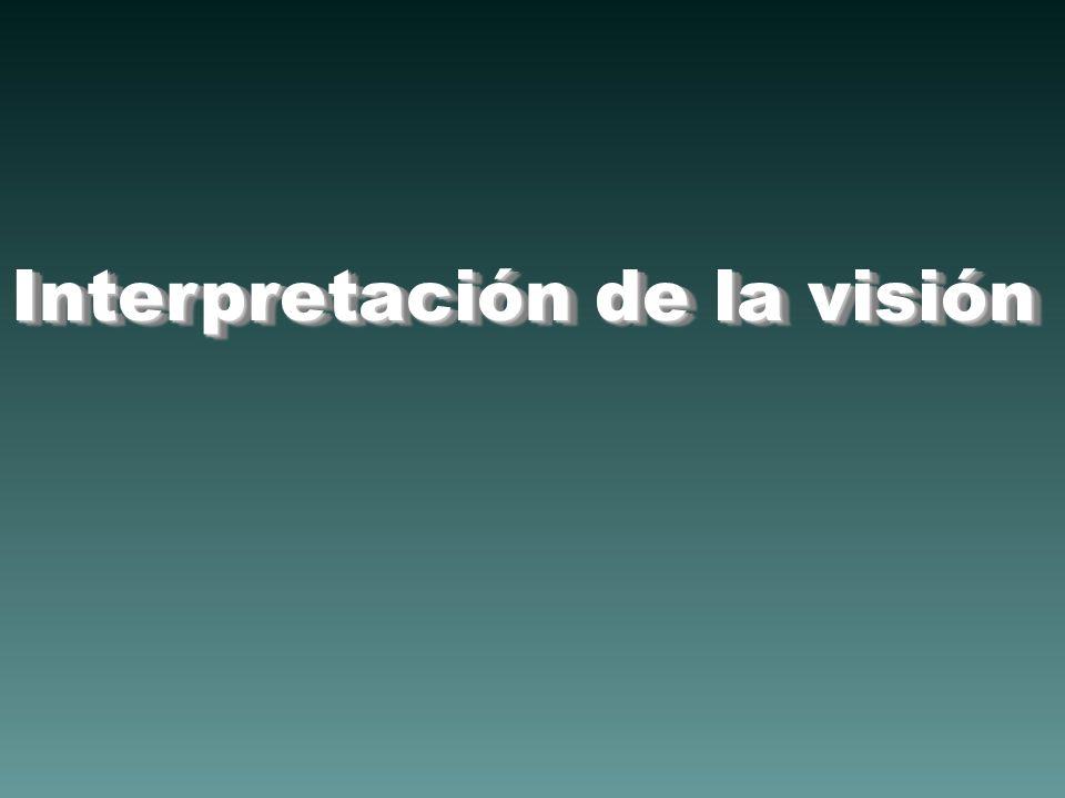 Interpretación de la visión