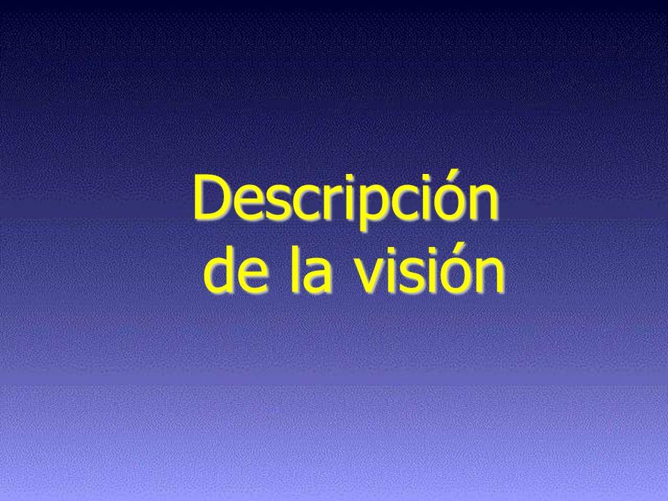 Descripción de la visión