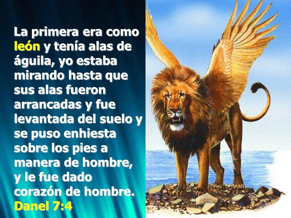 La primera era como león y tenía alas de águila, yo estaba mirando hasta que sus alas fueron arrancadas y fue levantada del suelo y se puso enhiesta s