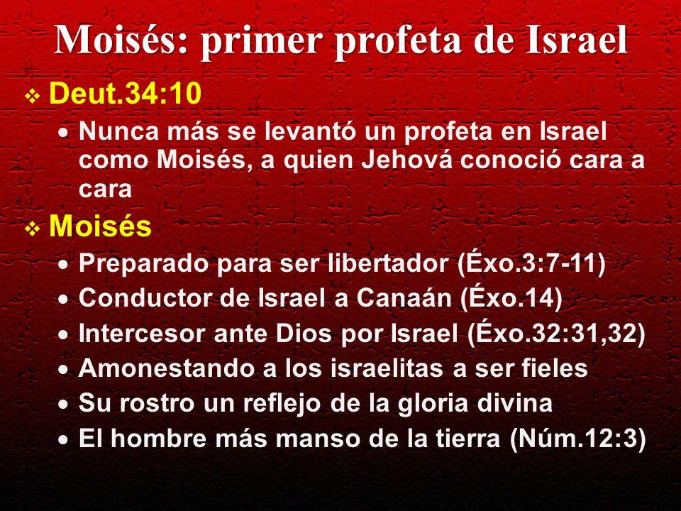 Profetas en Israel Deut.18:15 Un profeta como yo te levantará Jehová, tu Dios, de en medio de ti, de tus hermanos; a él oiréis Profetas Josué, Samuel, Gad y Natán, Ahías, Elías, Eliseo, Jeremías, Isaías, Miqueas, Naum, Habacuc, Malaquías Jeremías y Ezequiel (sacerdotes), Isaías y Sofonías (sangre real), Daniel (primer ministro), Samuel (juez), Eliseo (agricultor), Amós (pastor de ovejas)