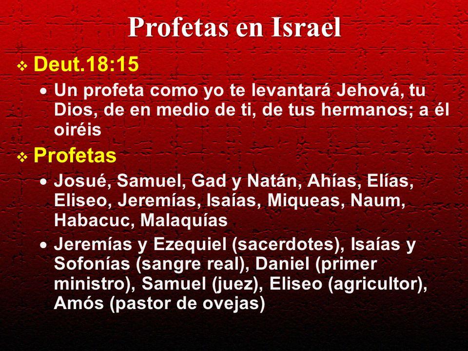 Profetas en Israel Deut.18:15 Un profeta como yo te levantará Jehová, tu Dios, de en medio de ti, de tus hermanos; a él oiréis Profetas Josué, Samuel,