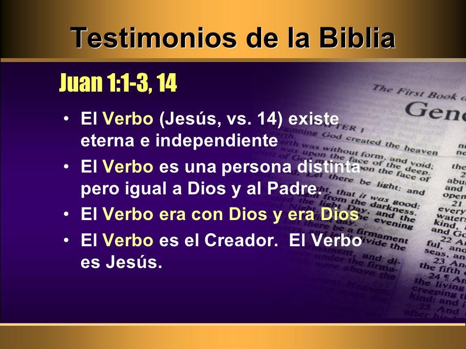 Testimonios de la Biblia El Verbo (Jesús, vs. 14) existe eterna e independiente El Verbo es una persona distinta pero igual a Dios y al Padre. El Verb
