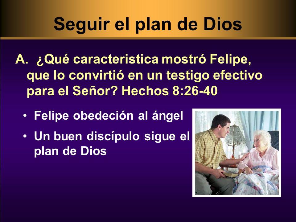 Seguir el Plan de Dios B.