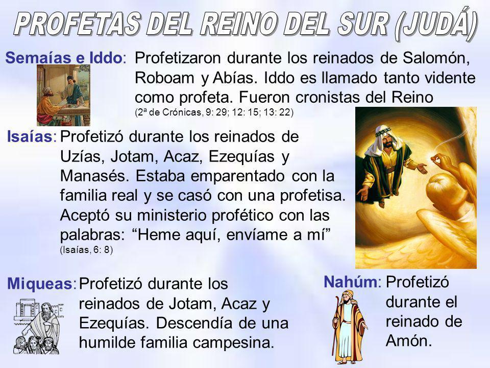 Semaías e Iddo:Profetizaron durante los reinados de Salomón, Roboam y Abías. Iddo es llamado tanto vidente como profeta. Fueron cronistas del Reino (2
