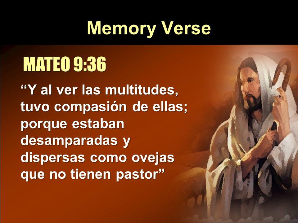 Memory Verse MATEO 9:36 Y al ver las multitudes, tuvo compasión de ellas; porque estaban desamparadas y dispersas como ovejas que no tienen pastor