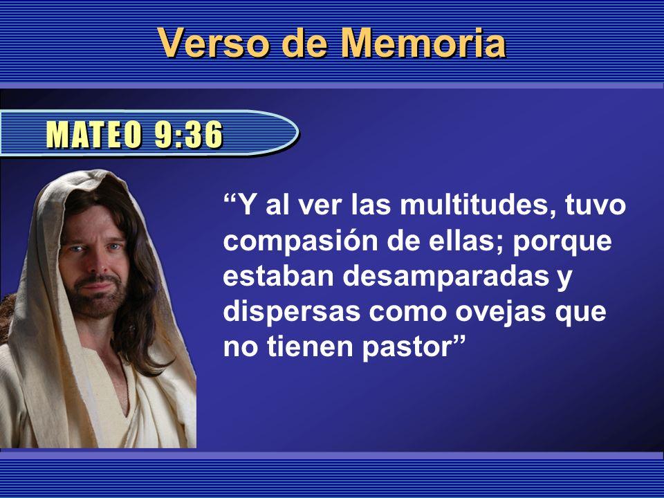 Verso de Memoria Y al ver las multitudes, tuvo compasión de ellas; porque estaban desamparadas y dispersas como ovejas que no tienen pastor MATEO 9:36