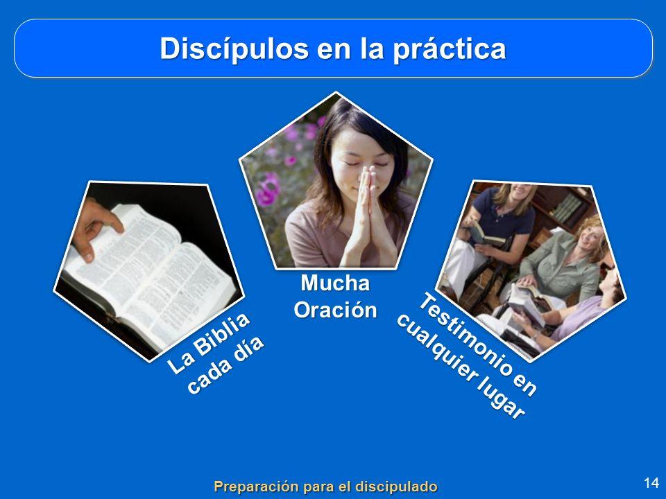 Discípulos en la práctica 14 Preparación para el discipulado MuchaOración La Biblia cada día Testimonio en cualquier lugar