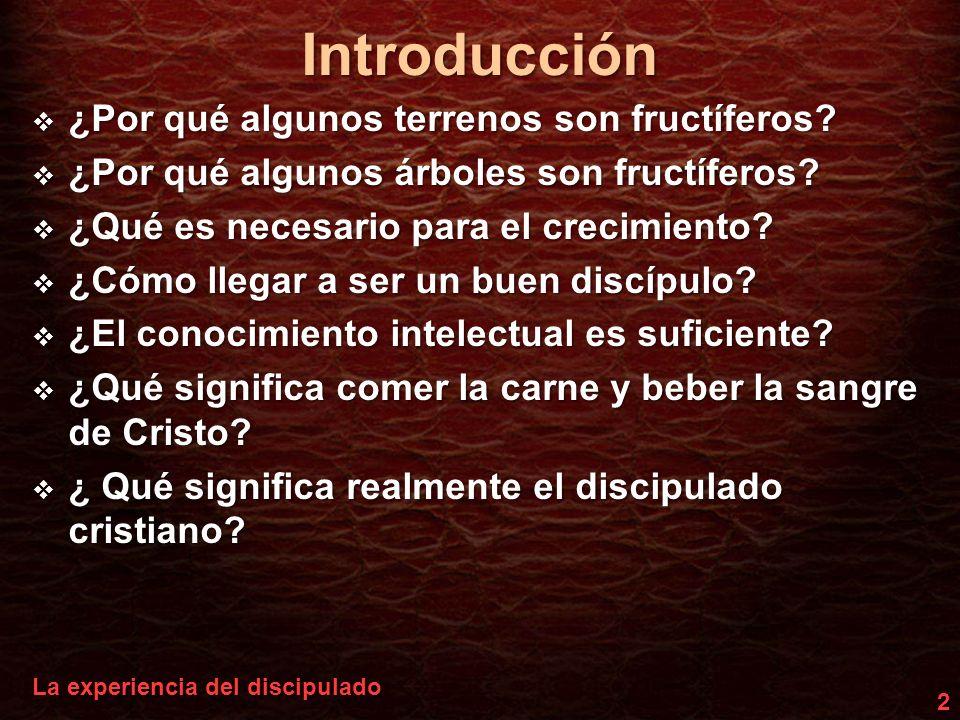 Introducción 3 El discipulado es una experiencia con Jesús ConocerConocerParticiparParticiparCambiadosCambiados JesúsJesús aporde E X P E R I E N C I A