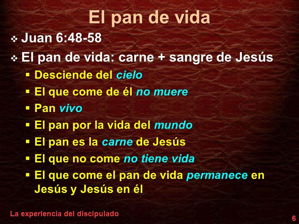El pan de vida Jesús el alimento: ¿teoría o práctica.