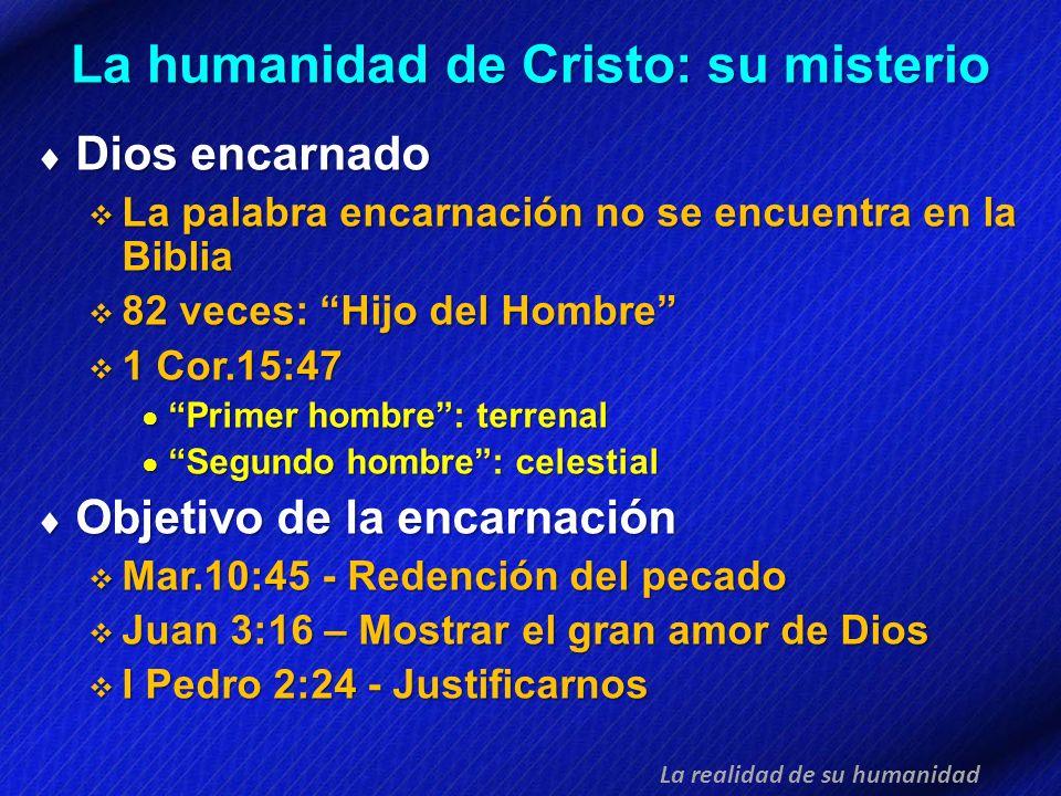 La humanidad de Cristo: su misterio Dios encarnado Dios encarnado La palabra encarnación no se encuentra en la Biblia La palabra encarnación no se enc