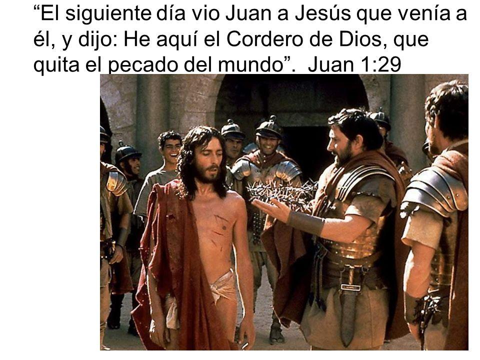 El siguiente día vio Juan a Jesús que venía a él, y dijo: He aquí el Cordero de Dios, que quita el pecado del mundo. Juan 1:29