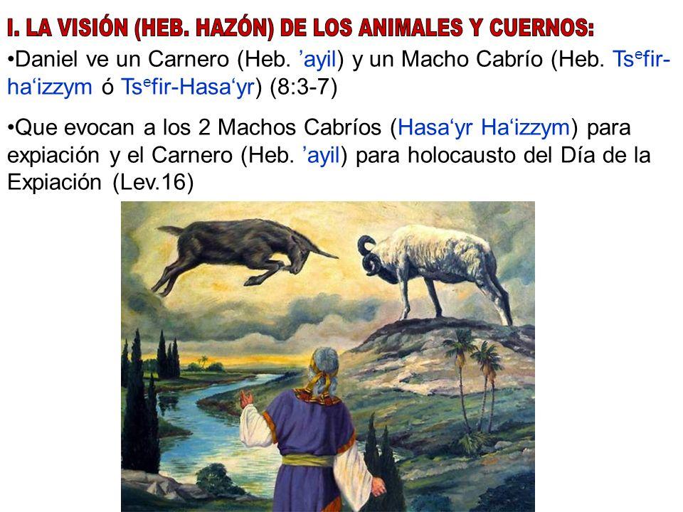 Daniel ve un Carnero (Heb. ayil) y un Macho Cabrío (Heb. Ts e fir- haizzym ó Ts e fir-Hasayr) (8:3-7) Que evocan a los 2 Machos Cabríos (Hasayr Haizzy