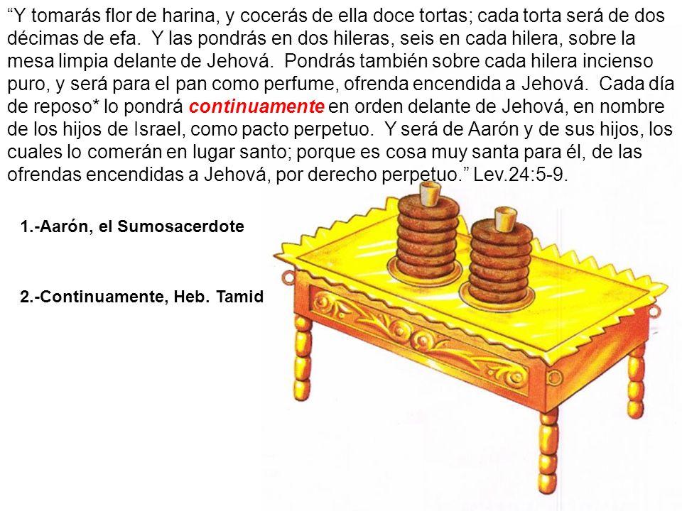 1.-Aarón, el Sumosacerdote 2.-Continuamente, Heb. Tamid Y tomarás flor de harina, y cocerás de ella doce tortas; cada torta será de dos décimas de efa
