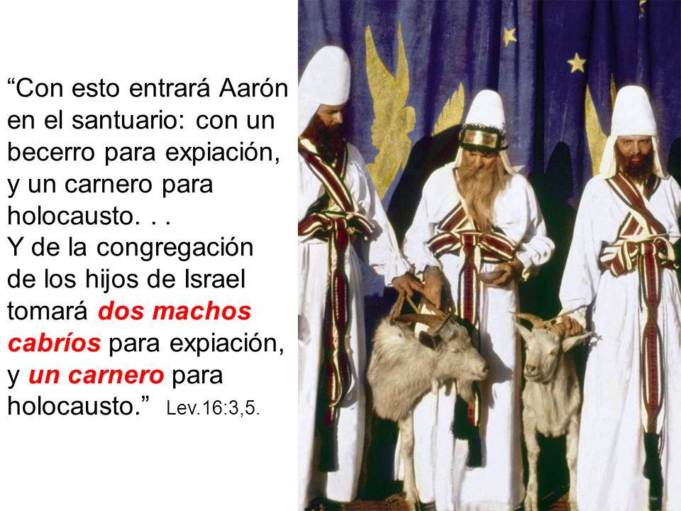 Con esto entrará Aarón en el santuario: con un becerro para expiación, y un carnero para holocausto... Y de la congregación de los hijos de Israel tom
