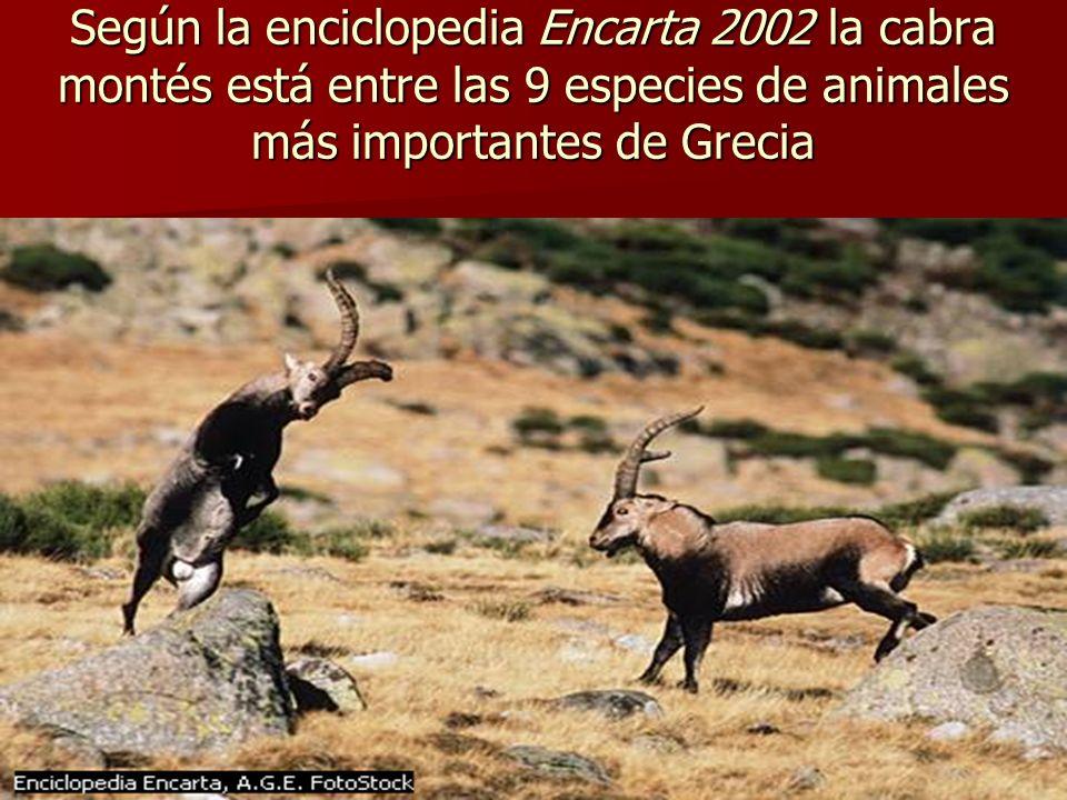 Según la enciclopedia Encarta 2002 la cabra montés está entre las 9 especies de animales más importantes de Grecia