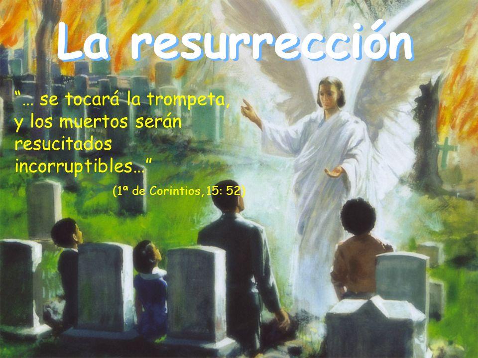 La resurrección … se tocará la trompeta, y los muertos serán resucitados incorruptibles… (1ª de Corintios, 15: 52)