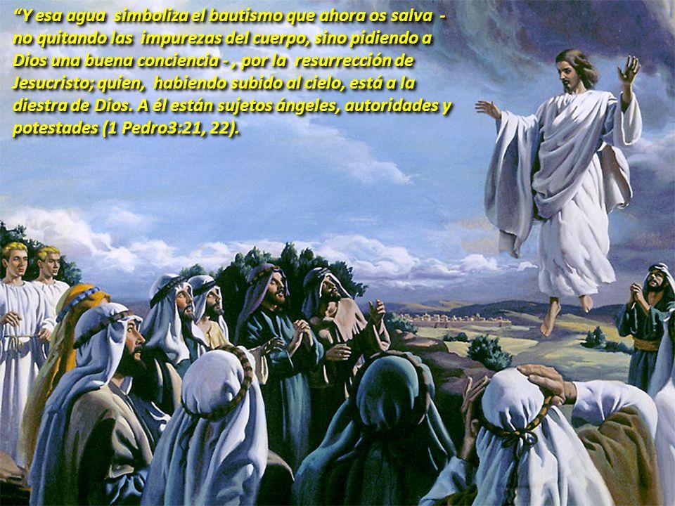 COMENTARIO 2 3 PUNTOS IMPORTANTES: Jesús llevó al cielo nuestra naturaleza glorificada, abriendo así los portales del cielo a la raza humana.