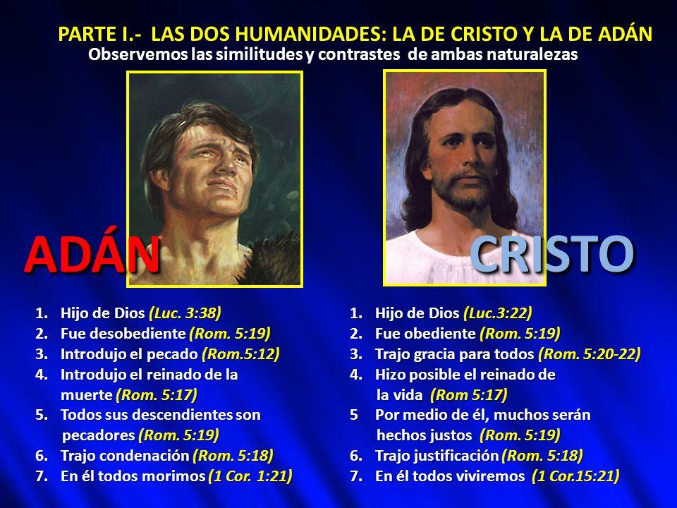 PARTE I.- LAS DOS HUMANIDADES: LA DE CRISTO Y LA DE ADÁN Observemos las similitudes y contrastes de ambas naturalezas 1.Hijo de Dios (Luc. 3:38) 2.Fue