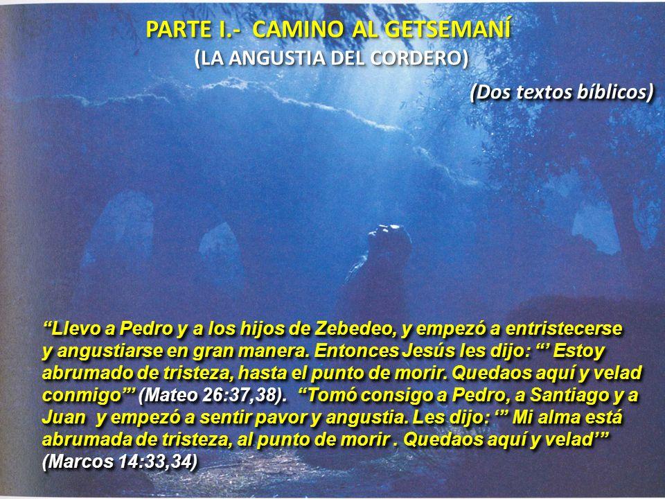 PARTE I.- CAMINO AL GETSEMANÍ (LA ANGUSTIA DEL CORDERO) PARTE I.- CAMINO AL GETSEMANÍ (LA ANGUSTIA DEL CORDERO) (Dos textos bíblicos) Llevo a Pedro y