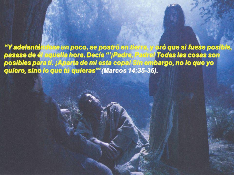 Mientras estuvo en el huerto, Jesús usó la metáfora de la copa para ayudarnos a comprender sus sentimientos íntimos.