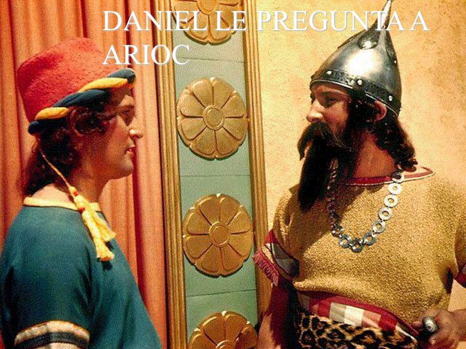 DANIEL LE PREGUNTA A ARIOC