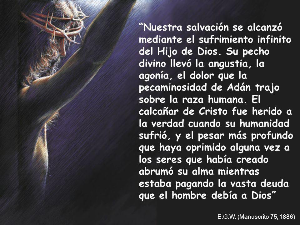Nuestra salvación se alcanzó mediante el sufrimiento infinito del Hijo de Dios. Su pecho divino llevó la angustia, la agonía, el dolor que la pecamino