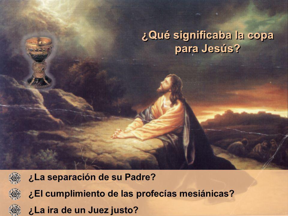 ¿La separación de su Padre? ¿El cumplimiento de las profecías mesiánicas? ¿La ira de un Juez justo? ¿Qué significaba la copa para Jesús? ¿Qué signific