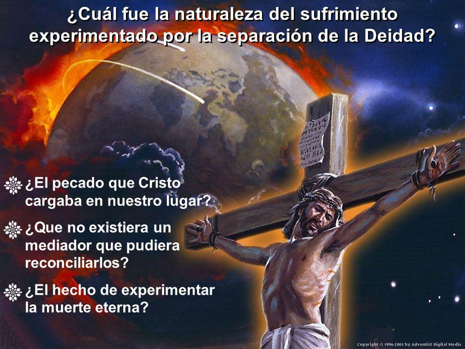 ¿Cuál fue la naturaleza del sufrimiento experimentado por la separación de la Deidad? ¿Cuál fue la naturaleza del sufrimiento experimentado por la sep