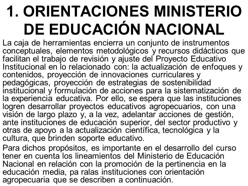 1. ORIENTACIONES MINISTERIO DE EDUCACIÓN NACIONAL La caja de herramientas encierra un conjunto de instrumentos conceptuales, elementos metodológicos y