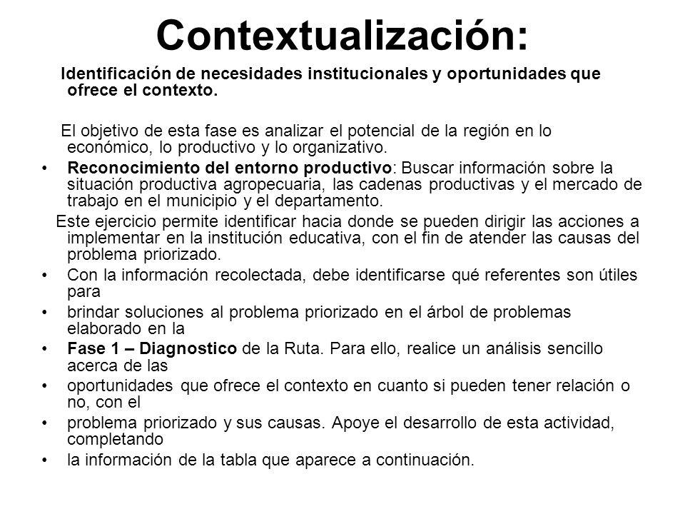 Contextualización: Identificación de necesidades institucionales y oportunidades que ofrece el contexto. El objetivo de esta fase es analizar el poten