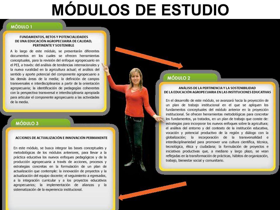 MÓDULOS DE ESTUDIO