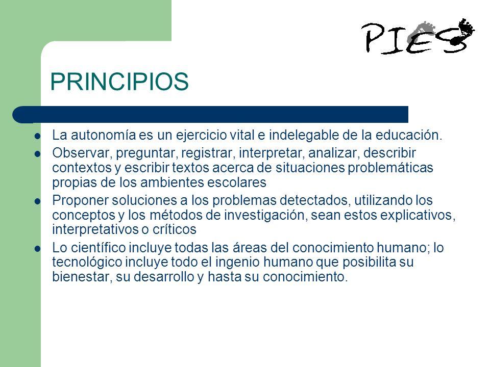 PRINCIPIOS La autonomía es un ejercicio vital e indelegable de la educación. Observar, preguntar, registrar, interpretar, analizar, describir contexto