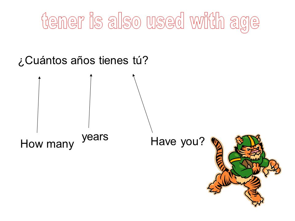 Fill in the blanks with the correct form of the verb TENER 1.Yo __________ dos perros.