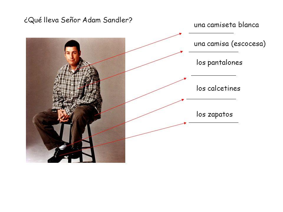 ¿Qué lleva Señor Adam Sandler.