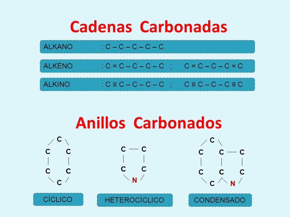 Cadenas Carbonadas CC CC C CC C C N ALKANO: C – C – C – C – C. ALKENO: C = C – C – C – C ; C = C – C – C = C ALKINO: C C – C – C – C ; C C – C – C C H