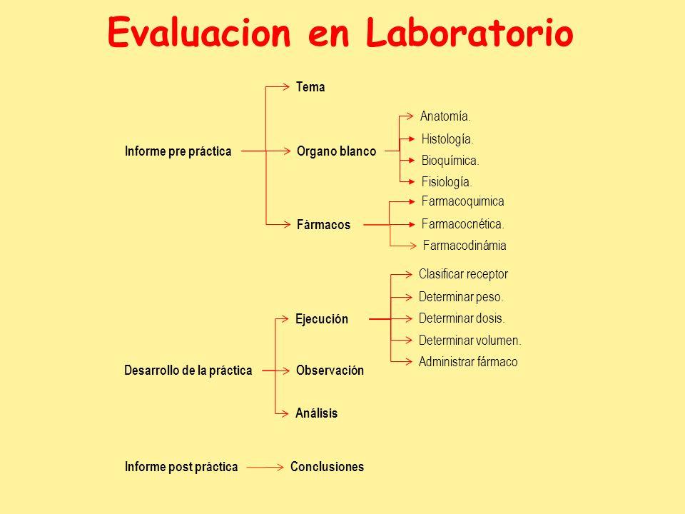Organo blanco Fármacos Anatomía. Histología. Bioquímica. Fisiología. Farmacoquimica Farmacocnética. Farmacodinámia Clasificar receptor Determinar peso
