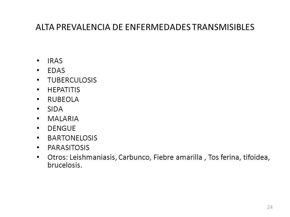 ALTA PREVALENCIA DE ENFERMEDADES TRANSMISIBLES IRAS EDAS TUBERCULOSIS HEPATITIS RUBEOLA SIDA MALARIA DENGUE BARTONELOSIS PARASITOSIS Otros: Leishmania
