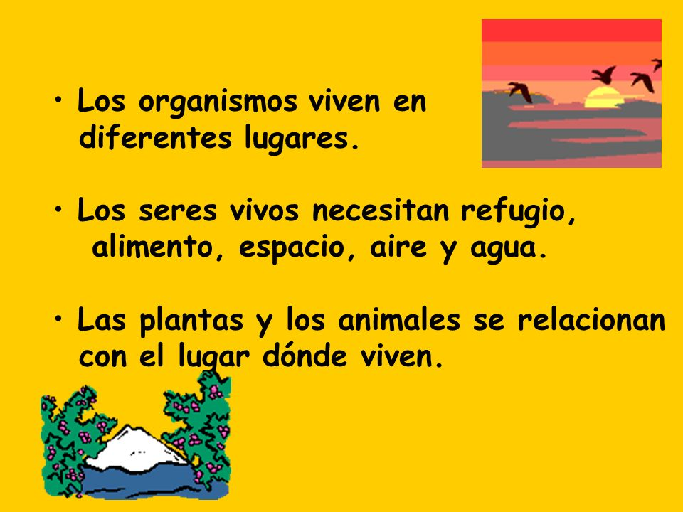 Los organismos viven en diferentes lugares. Los seres vivos necesitan refugio, alimento, espacio, aire y agua. Las plantas y los animales se relaciona