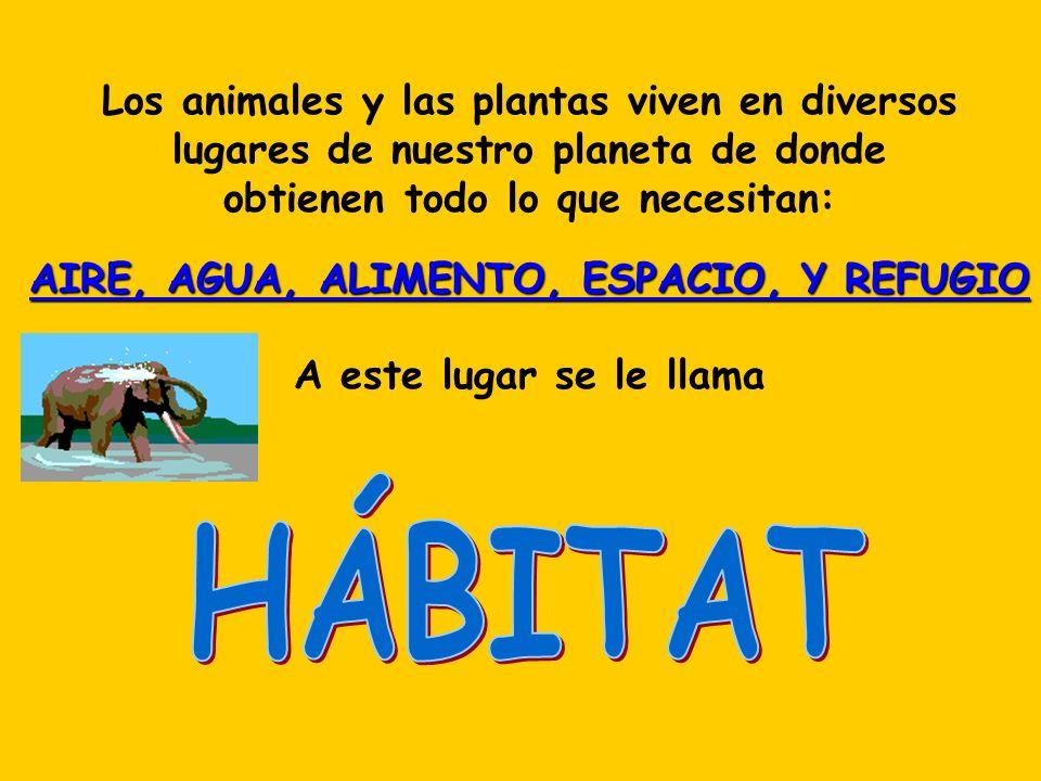 Los animales y las plantas viven en diversos lugares de nuestro planeta de donde obtienen todo lo que necesitan: AIRE, AGUA, ALIMENTO, ESPACIO, Y REFU