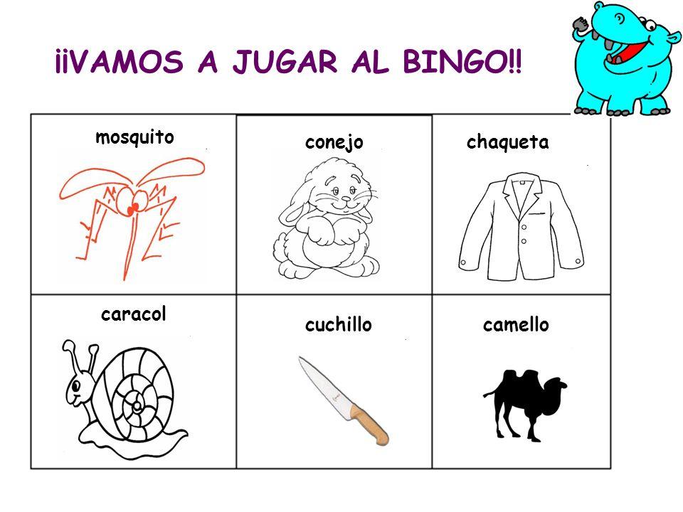 ¡¡VAMOS A JUGAR AL BINGO!! mosquito conejo caracol chaqueta cuchillocamello