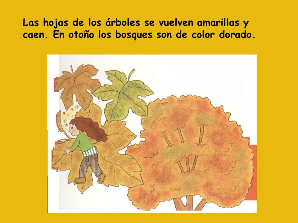 El Otoño El otoño empieza el 21 de marzo y termina el 21 de junio marzo junio
