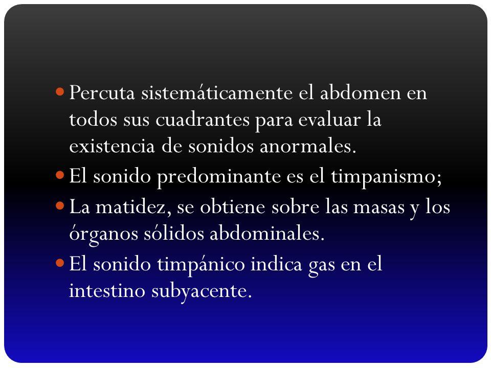 Percuta sistemáticamente el abdomen en todos sus cuadrantes para evaluar la existencia de sonidos anormales. El sonido predominante es el timpanismo;