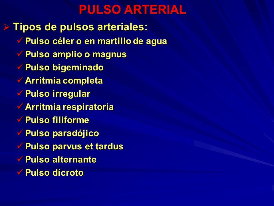 PULSO ARTERIAL Tipos de pulsos arteriales: Tipos de pulsos arteriales: Pulso céler o en martillo de agua Pulso céler o en martillo de agua Pulso ampli