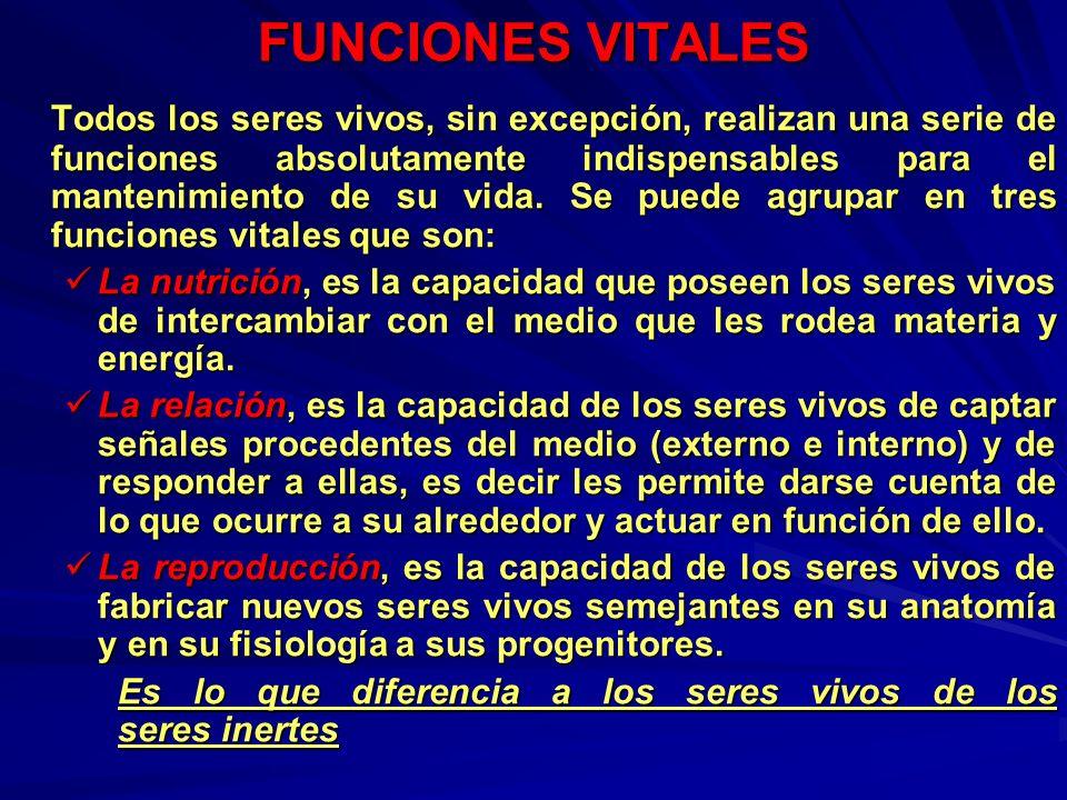 SIGNOS VITALES FRECUENCIA RESPIRATORIA A.