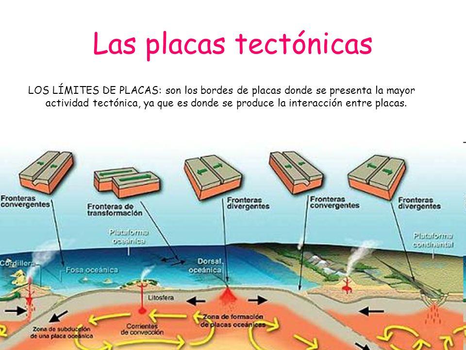 Las placas tectónicas LOS LÍMITES DE PLACAS: son los bordes de placas donde se presenta la mayor actividad tectónica, ya que es donde se produce la in