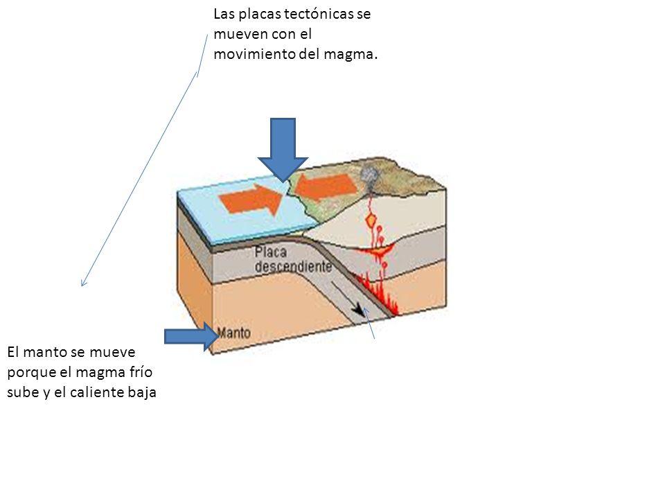 El manto se mueve porque el magma frío sube y el caliente baja Las placas tectónicas se mueven con el movimiento del magma.