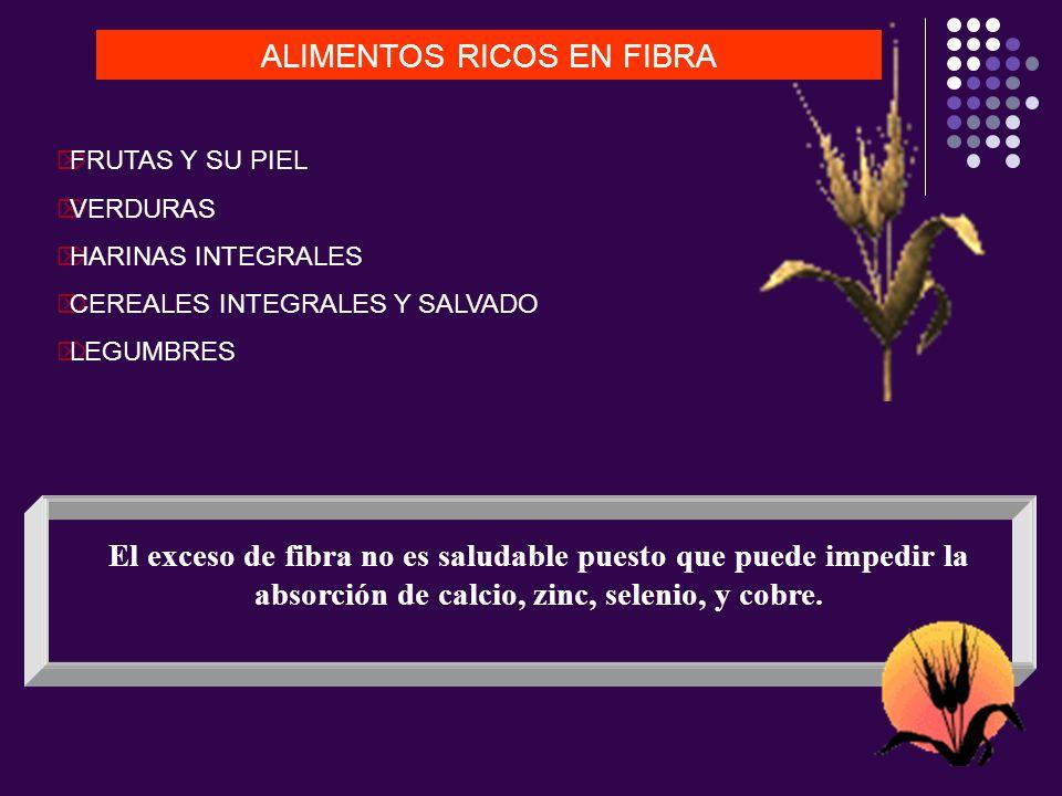 ALIMENTOS RICOS EN FIBRA FRUTAS Y SU PIEL VERDURAS HARINAS INTEGRALES CEREALES INTEGRALES Y SALVADO LEGUMBRES El exceso de fibra no es saludable puest
