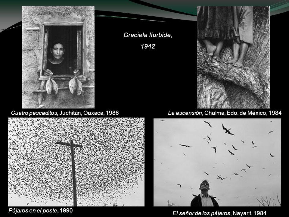 El señor de los pájaros, Nayarit, 1984 Cuatro pescaditos, Juchitán, Oaxaca, 1986 Graciela Iturbide, 1942 La ascensión, Chalma, Edo. de México, 1984 Pá