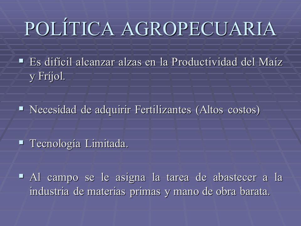 POLÍTICA AGROPECUARIA Es difícil alcanzar alzas en la Productividad del Maíz y Fríjol. Es difícil alcanzar alzas en la Productividad del Maíz y Fríjol